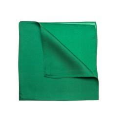 grünes Nickituch Halstuch aus Twillseide